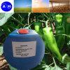 Plant Source Amino Acid Liquid for Organic Fertilizer