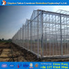 Amazing PC Sheet Cover Material Industrial Greenhouse for Vegetable