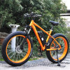 Classic Fat Tire Mountain E Bike