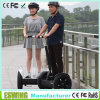Self-Balancing Electric Skateboard (swing board) for Having Fun (Eswing-III)