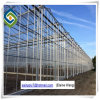 PC Sheet / Polycarbonate/Turnel/Glassgreenhouse for Flower Growing