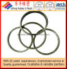 Higth Quality Rubber Seal Ring/O-Ring