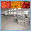 Water Saving Fruit Washing Cleaning Machine