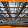F-Clean Film Roof Glass Wall Greenhouse for Planting Vegetables