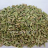 New Crop Clean Well Dried No Moldy Fennel Seeds