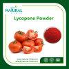 Tomato Extract Lycopene Powder