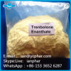 High Purity Trenbolone Enanthate Yellow Crystalline Powder