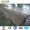 Tp317L 1.4449 1.4438 Stainless Steel Seamless Pipe & Tube
