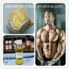 Injectable Boldenone Undecylenate/EQ for Muscle Growth with Safe Delivery