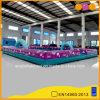 Inflatable Sport Playground Equipment (AQ1882)