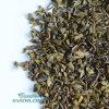 Premium Quality Gunpowder Green Tea (9372B)