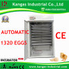 More Than 98% Hatching Rate Egg Incubator Thermostat (KP-12)