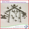 All Kinds of Bolt/Nut/Screw/Wing Nut/Hex Bolts/U-Bolt/Anchor Bolt Made in China