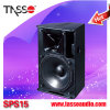 Subwoofer Professional Sound Systems Speaker