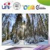 OEM Super Thin China 55-Inch Smart LED TV