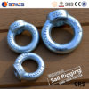 Electrical Galvanized Iron Ring Nut (DIN 582)