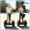 Human Transporter 2 Wheel Electric Chariot for Sale