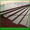 Construction Used Black Marine Plywood