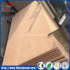 Two Sides Natural Ash/Red Oak Veneer Laminate MDF Board