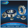 Xtsky Deep Groove Ball Bearing (4202)