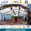 Aluminum Frame Transparent PVC Tent for Agriculture Tent