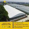 Big Arcum Exhibition Tent with All Glass Walls & Doors (P2 HAC)