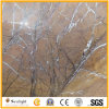 Brown Tropical Rainforest Marble for Countertop Slabs or Floor Tile