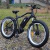 Ba Fun Middle Motor 250W Electric Bicycle