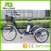 Three Wheels Tricycle Electric Trike for The Disabled E Tricycle with Lithium Battery