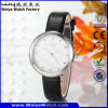 ODM Casual Leather Strap Quartz Woman Classic Watch (Wy-060E)