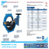 F5 Double Flanged Eccentric Butterfly Valve with Bypass Valve