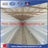 Jinfeng Lause Chicken Farm Poultry Equipment for Sale