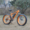 26inch*4.0 Fat Tire MTB Electric Bike