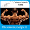 Injectable Testosterone Isocaproate Anabolic Steroids Supplement CAS: 15262-86-9