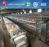 Poultry Farming Equipment/Layer Chicken Cage/Broiler Chicken Cage