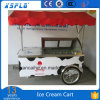Ice Cream Display Cart/Gelato Cart Showcase/Popsicle Cart
