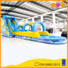 2 in 1 Wet and Dry Inflatable Water Slide Amusement Park Toy (AQ1036-1)
