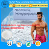 CAS 62-90-8 Muscle Building Injectable Anabolic Steroids Nandrolone Phenylpropionate Npp
