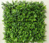 Plastic Vertical Boxwood Grass Panels for Wall Covering Decoration