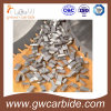 Tungsten Carbide Saw Tips for Wood