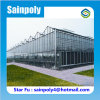 Electric Glass Greenhouse with All Systems