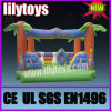 Inflatable Bouncer, Inflatable Castle, Inflatable Jumping (CASTLE-0000)
