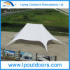 16X21m Twin Star Tent Outdoor Promotional Double Peak Star Canopy
