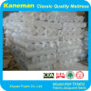 "Rolled Foam Mattress, 4"" Foam Mattress"