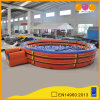 Inflatable Rodeo Bull Rides for Amusement Park (AQ1623-1)