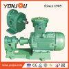 Yonjou Gear Oil Pump
