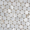 2017 Freshwater Shell Mosaic Building Material for Wall 300*300mm