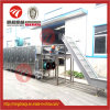 Belt Tunnel-Type Hot Air Dryer Stainless Steel Technical Hot Air