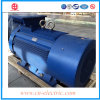 11kv High Tension Squirrel Cage Asynchronous Motor