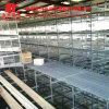 Factory Directly Supply Durable Poultry Broiler Bird Chicken Cage for Wholesales